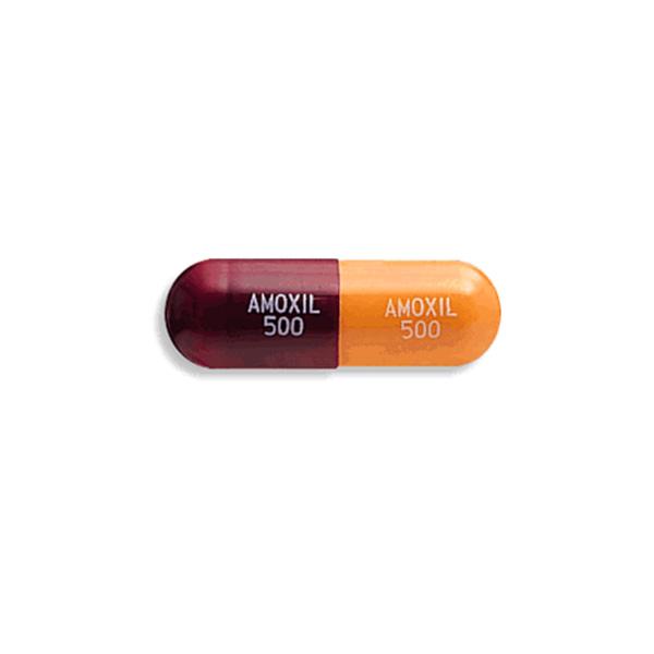 Brand Amoxil